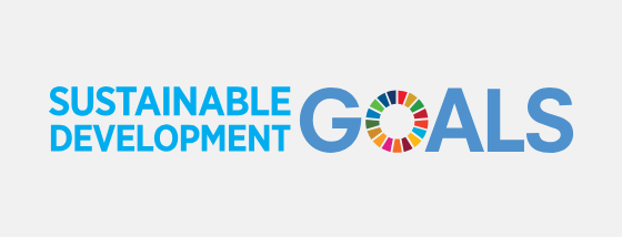Sustainable Development Goals : SDGs